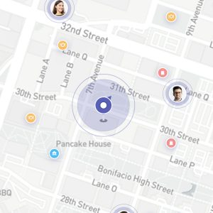 App home map view